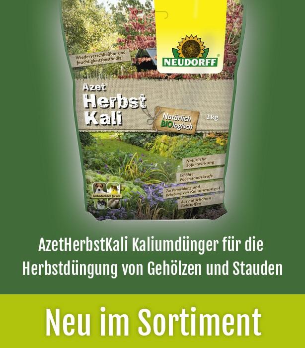 Obstbäume, Beerenobst, Halbstamm Oder Zierpflanze   Alles In Einem Online  Shop: Gruener Garten Shop.de